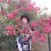 Вера, 52, г.Евпатория