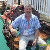 Анатолий, 60, г.Лесозаводск