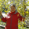 Валентина, 60, г.Павловск (Алтайский край)
