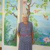 Раиса, 68, г.Фокино